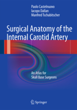 Surgical Anatomy of the Internal Carotid Artery