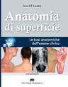 Anatomia di Superficie
